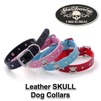 Leather Skull Dog Collar (3 Sizes, 3 Colors)