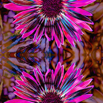 abstract - flowers Flower Power Three