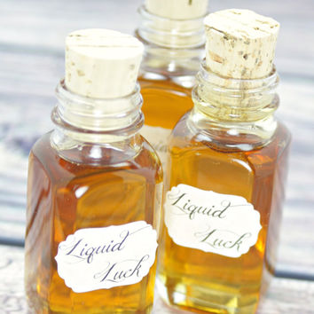 Harry Potter Party Liquid Luck Mini Glass Bottles + Corks Set of 6 for Favors w/Free Printable Labels