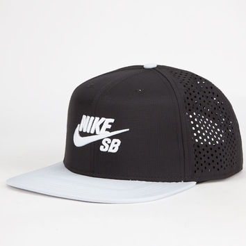 Nike Sb Performance Mens Trucker Hat Black/Silver One Size For Men 25402414501