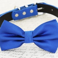 Royal blue dog Bow tie attached to collar, birthday gift, Beach wedding