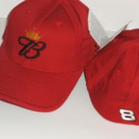 BUD Collector's Ballcap of Dale Jr #8, new w/tags