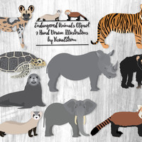 Endangered Animals Clipart African Wild Dog Tiger Ferret Red Panda Sea Lion Elephant Rhino Hawksbill Turtle Chimpanzee Wild Animal Scrapbook