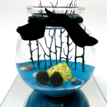 Marimo moss ball terrarium in the beautiful quartz sea, live japanese marimo moss terrarium with ultra rare quartz gem