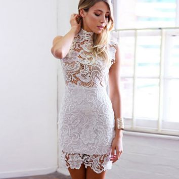 Lace collar double hollow out back zipper pencil dress