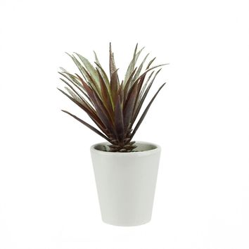 """7.25"""" Artificial Red and Green Aloe Succulent Plant Decorative Round White Pot"""