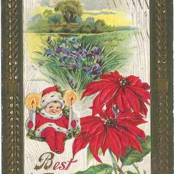 Cutest Elf-On-the-Shelf or Kewpie look alike on this Vintage Postcard Christmas Greetings Poinsettias Irises in Meadow Scene 1910
