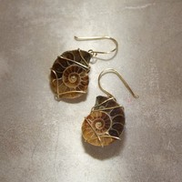 Ammonite Fossil Earrings - Chocolate Caramel Neutral Wire Wrapped Rustic Boho Tribal Jewelry - CIJ SALE