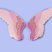 Feather Wing Pin Set - Listing 1