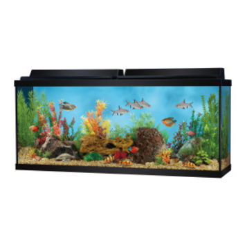 Top fin 55 gallon aquarium starter kit from pet smart for Smart fish tank