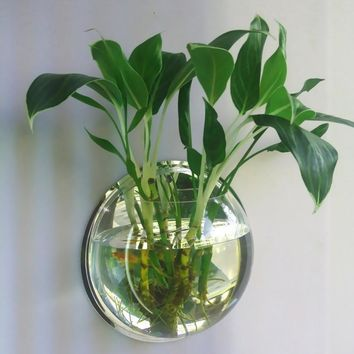 AMW 1PC High Borosilicate Glass Hanging Glass Flower Planter Vase Terrarium Container Home Garden Ball Decor