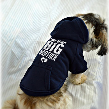 Custom Dog Sweatshirts. Only Child Big Brother. New Baby Reveal Idea. Small Pet Clothes. Pregnancy Announcement Idea.