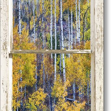 Aspen Tree Magic Cottonwood Pass White Farm House Window Art Metal Print