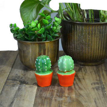 Cactus Salt & Pepper Shakers Cactus Figurines Green Cactus Cacti Southwestern Decor