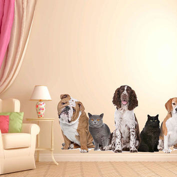 Animals wall Decals dogs Wall Decals cats wall decor dogs Full Color Decals dogs Art Sticker veterinary clinic decor Home Decor cik2202