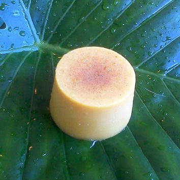 Rainforest Chica Body Butter Bar - Exotic Amazon Rainforest butters and oils - Vegan and Non-vegan, organic, wild harvested