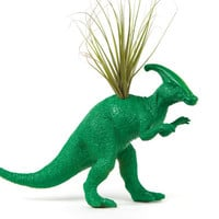 Green Dinosaur planter with air plant, dorm room decor