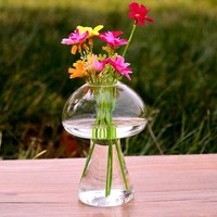 Hot mushrooms glass vase glass containers DIY home decoration modern style