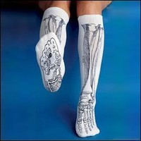 Anatomical Chart Co. - Bone Socks - - Black