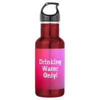 Pink Flamingo Stainless Steel Water Bottle