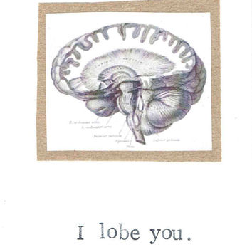 I Lobe You Brain Anatomy Science Biology Funny Simple Nerdy Medical Humor Love Card