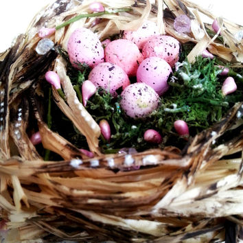 Birds Nest Canvas Wall Art with Pink Eggs. Spring is here! Wall Hanging Canvas Art. Family. Ready to ship. Display Art
