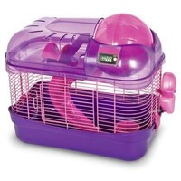 Spin City Hamster Health Club - Purple