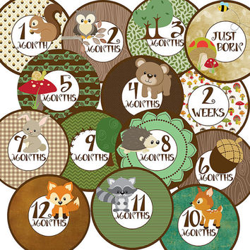 14 Woodland Forest Animals Fox Owl Bear Racoon Deer Unisex Neutral Baby Boy or Girl Monthly Milestone Onesuit Stickers Newborn Shower Gift