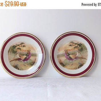 ON SALE - Pheasant Bird Game Plates, Vintage Schwarzenhammer Imperial Germany, Porcelain Salad Plates, Woodland Home Decor