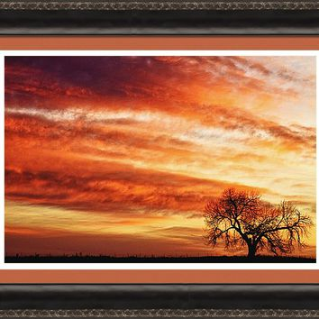 Morning Has Broken Like The First Dawning Country Landscape Framed Print