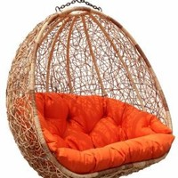 Estella - Dual Sitting Outdoor Wicker Swing Chair/Porch Hanging Chair - DL024TW: Home & Kitchen