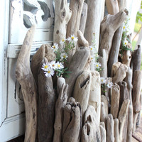 Surf Tumled Driftwood Supplies - Collection of 47 Chubby and Rustic Drift Wood Pieces for Coastal Decor & Beach wedding Decoration