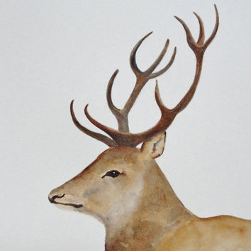 Red Deer with Antlers for Father's Day by maryrichmonddesign
