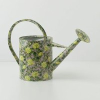 Climbing Roses Watering Can by Anthropologie Yellow One Size Garden
