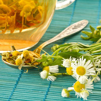 Chamomile Cybilla Fragrance Oil | Bramble Berry® Soap Making Supplies