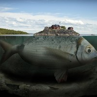 """Fishy Island"" - Art Print by Erik Johansson"