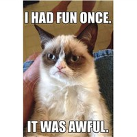 Grumpy Cat - Fun Poster Dorm Room Shopping Decorate Your Dorm Room College Essentials
