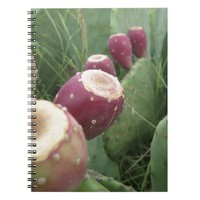 Texas Cactus Spiral Note Books