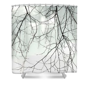 Still Life With Eucalyptus Tree Shower Curtain for Sale by Ben and Raisa Gertsberg