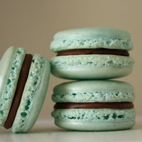 Seafoam Green Vanilla and Milk Chocolate Ganache Shimmer French Macaron - featured on OnToBaby.com