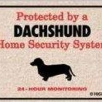 High Cotton Home Security Dachshund Doormat