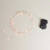 Micro 30-Bulb String Lights - World Market