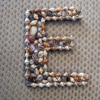 Seashell Letter E 4inches high the last one left and a great deal