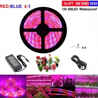 Topled Light LED Plant Grow Light, 5Metres/16.4ft with Power Adapter, Full Spectrum Red Blue 4:1 Rope Lights for Aquarium Greenhouse Hydroponic Yard Garden Flowers Veg Grow Lights: Amazon.ca: Patio, Lawn & Garden