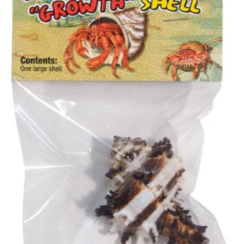 Hermit Crab Growth Shell Large - 1Pk
