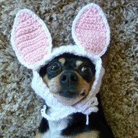 Dog Wearing Hat CROCHET PATTERN Bunny Hat for Dogs Dog Halloween Costume for Dogs Bunny Rabbit Hat Dog Supplies Cute Kawaii Hat Dog in Hat