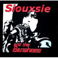 Siouxsie And The Banshees- Siouxsie Singing back patch (bp660)