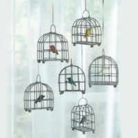 Six Little Bird Cages