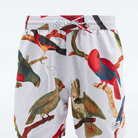 Penfield Macaw Bird Swim Shorts in White - Urban Outfitters
