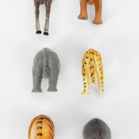UrbanOutfitters.com > Animal Butt Magnets